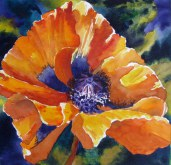 Elaine Tweedy - Orange Oriental Poppy (SOLD)