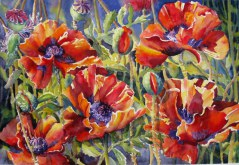Elaine Tweedy - Five Oriental Poppies (SOLD)