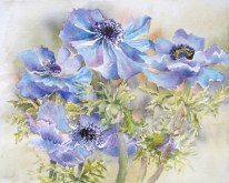 Elaine Tweedy - Purple Anemonies